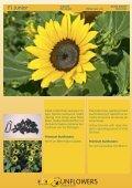 Katalog 2011 - Theo Gauweiler - Seite 4