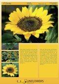Katalog 2011 - Theo Gauweiler - Seite 6