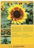 Katalog 2011 - Theo Gauweiler - Seite 7