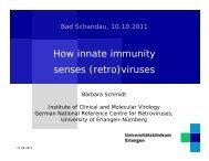 How innate immunity senses (retro)viruses