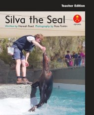 L15 TEpp Silva The Seal - Comments on