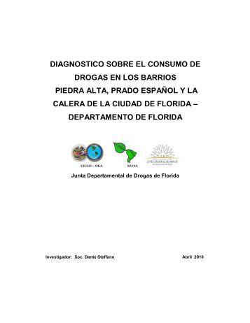 DIAGNOSTICO SOBRE EL CONSUMO DE DROGAS ... - cicad