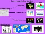 Terrestrial Carbon Monitor