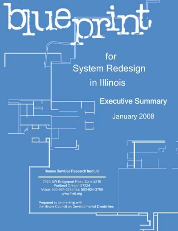 System Redesign for in Illinois - Human Services Research Institute