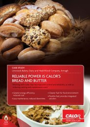 ReLIaBLe POWeR Is CaLOR's BRead aNd ButteR - Calor Gas