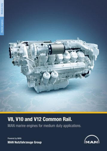 V8, V10 and V12 Common Rail.