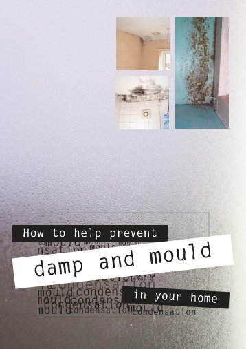 Damp and mould leaflet.qxd - Dorsetforyou.com