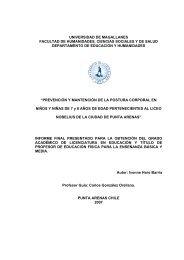 Instrumento: Lista de cotejo - Universidad de Magallanes
