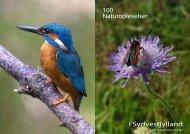 100 Naturoplevelser i Sydvestjylland - VisitVejen