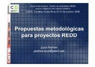 Metodologías propuestas para deforestación en mosiaco y frontera