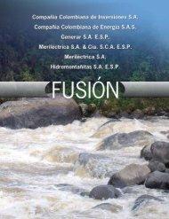 Informe de Fusión 2009 - Celsia