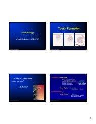 PER 811-812 Pulp Biology part1CTP.pdf