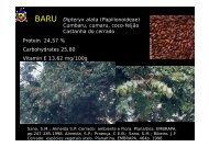 Dipteryx alata (Papilionoideae) C b f ã Cumbaru ... - Planet Diversity