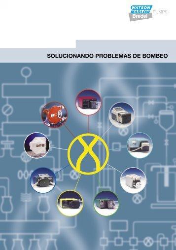 SOLUCIONANDO PROBLEMAS DE BOMBEO Bredel