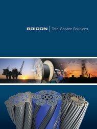 Oil & Gas Catalogue - Bridon