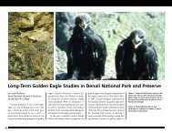 Long-Term Golden Eagle Studies