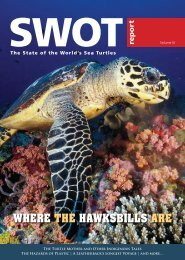 WHERE THE HAWKSBILLS ARE - The State of the World's Sea Turtles