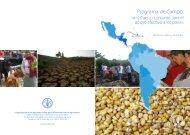Programa de Campo: un esfuerzo conjunto para el apoyo efectivo a ...