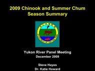 S o n ar P assag e E stim ate (# Ch inook) - Yukon River Panel