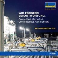 HSE Jahresbericht 2012