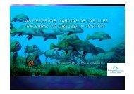 las reservas marinas de las illes balears - Confederación Española ...