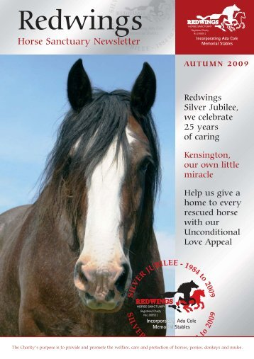 Autumn Newsletter 2009 - Redwings