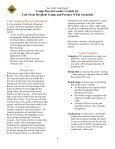 Parent/Leader's Guide - Rocky Mountain Council - Page 2