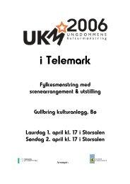 UKM-program 2006