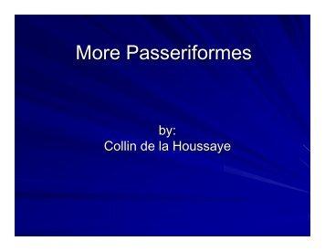 Collin de la Houssaye