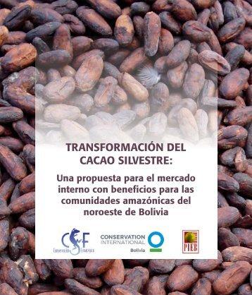 Memoria Transformación del Cacao Silvestre