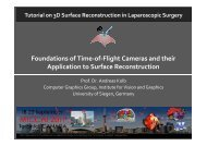 Foundations of Time-of-Flight Cameras and their Application to ...