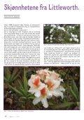 Utgave nr 1 - Den norske Rhododendronforening - Page 4