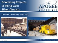 Developing Projects In World Class Silver Districts - Apogee Silver