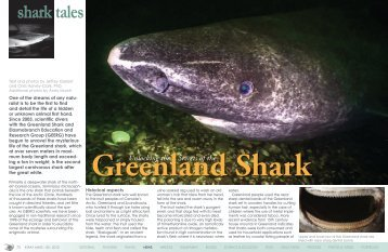 Greenland Shark | X-Ray Mag Issue #50 | Sept ... - X-Ray Magazine