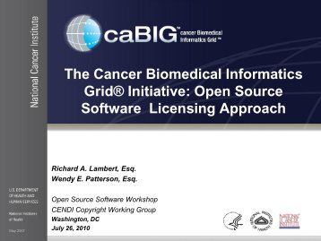 Open Source Software Licensing Approach - cendi