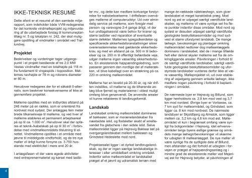 VVM Rapport - Billund Kommune