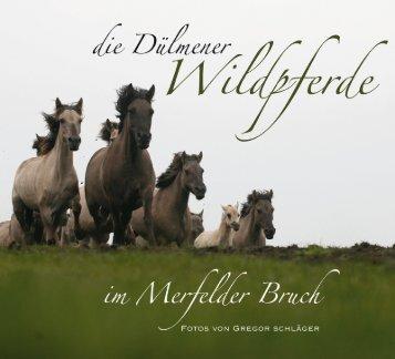 LESEPROBE - Verlag Schnell