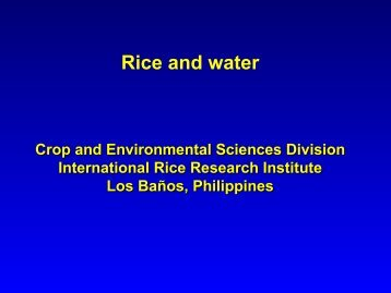 Rice and Water - Rice Knowledge Bank - International Rice ...