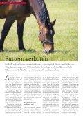 Oberbayern - Seite 6