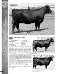 Layout 2 - MCS Auction, LLC - Page 4