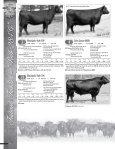 Layout 2 - MCS Auction, LLC - Page 6