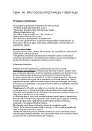 TEMA 56.- PROTOZOOS INTESTINALES Y GENITALES - micromadrid