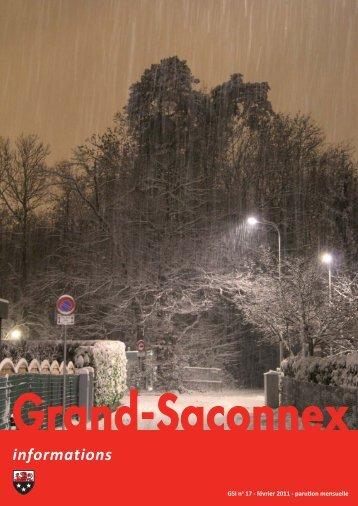 n° 17 - Grand-Saconnex informations février 2011