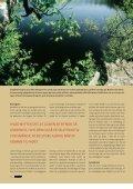 Read article (pdf - 1188 KB) - Jens Bursell - Page 5