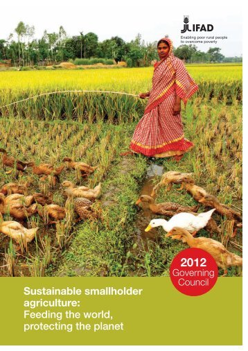 Sustainable smallholder agriculture: Feeding the world ... - IFAD