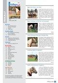 AUSBILDUNG REPORT FREIZEIT ZUCHT - Seite 2
