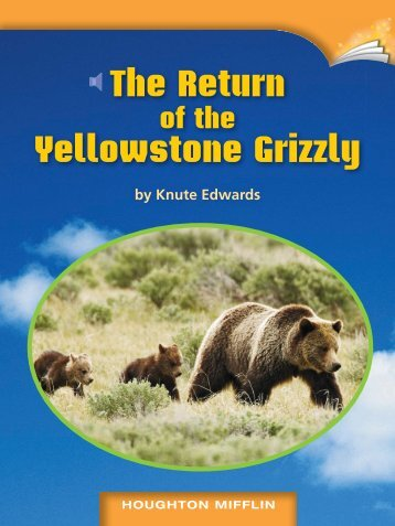 The Return Yellowstone Grizzly