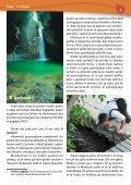 PDF formatu - Kapucini - Page 7