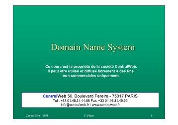 DNS (Central Web).pdf