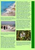 Naturturist - Skagens Gren - Page 2